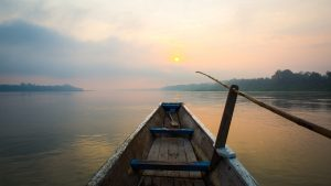 Psychotherapy and tranquility